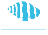Cabo BDS